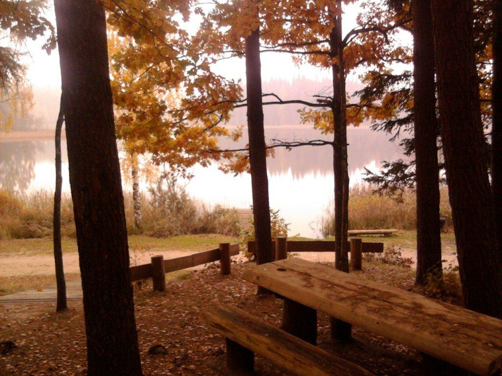 Pokaiņu velo rogaininga apvidus, atpūtas vieta pie ezera