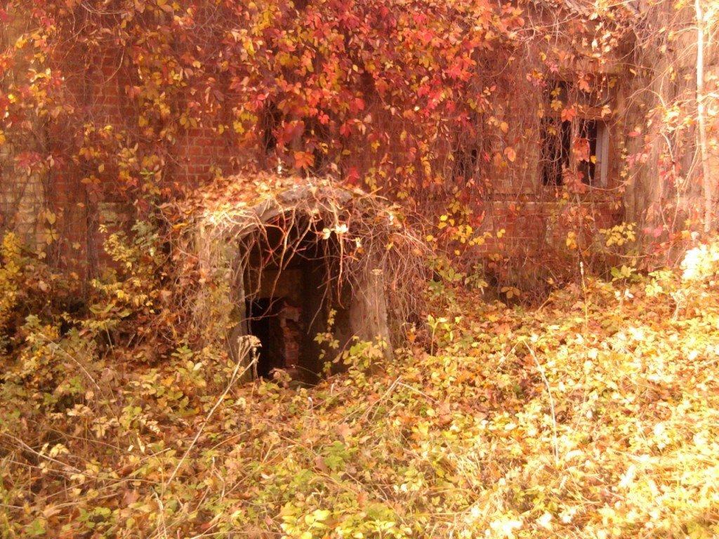 Pokaiņu velo rogaininga apvidus, pamestā muiža