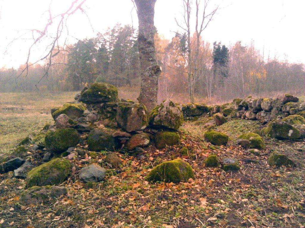Drupas uz dienvidiem no Pokaiņu meža
