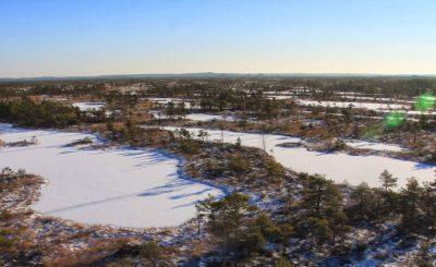 Tundra un mūžīgais sasalums - Ķemeru tīrelis