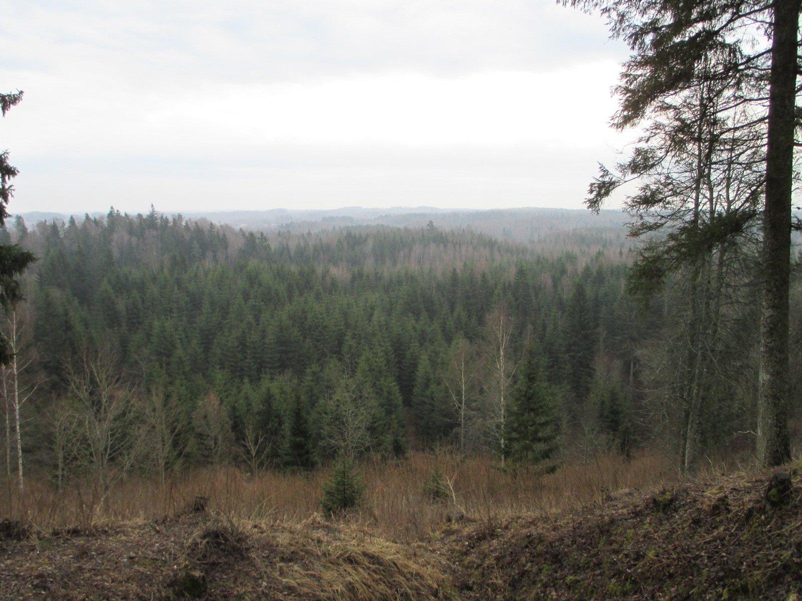 Skats no Krievu kalna
