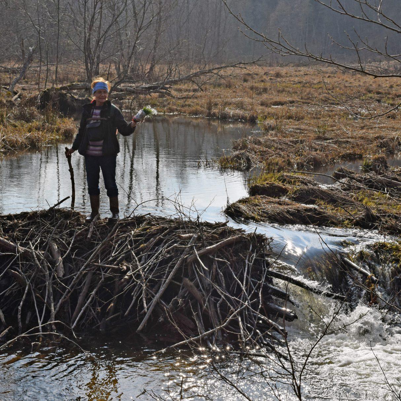 Mārīte uz Bebru dambja pie ūdenskrituma Embūtē 2016. gada 27. martā.