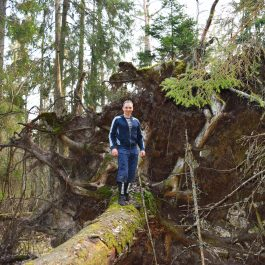 Uz saknes Embūtes mežā uz ZR no Bagas kalna