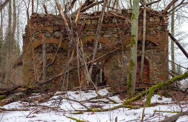 No varenās muižas mūsdienās ir saglabājušās mežā ieaugušās prāva izmēra kapenes.