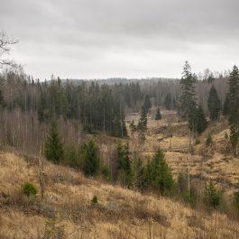 Kojas upes ielejas ainava ziemā bezsniega